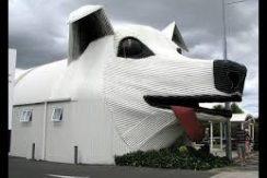 casa_del_cane
