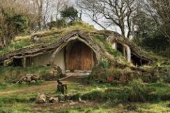casa_immersa_nel_verde