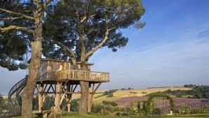 casa_sull'albero