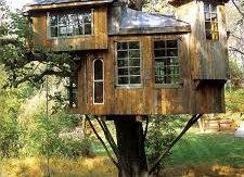 casa_sull'albero_2